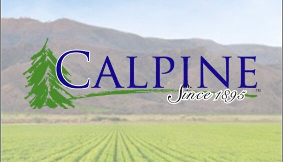 Rainier Partners Acquires Calpine Containers